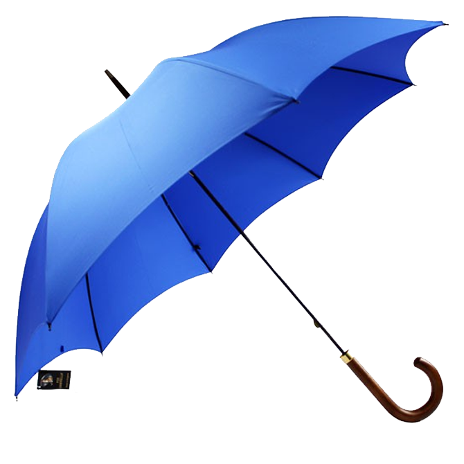 Parapluie Fox Umbrella