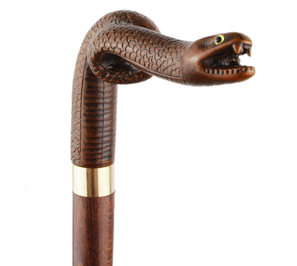 canne serpent