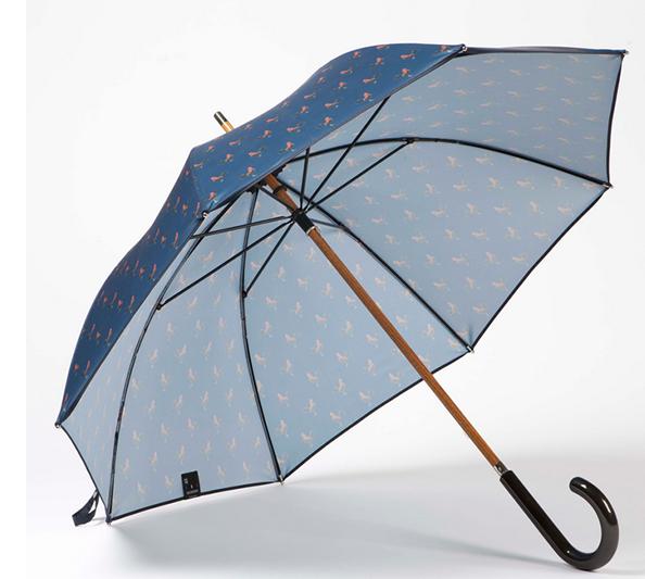 parapluie coq